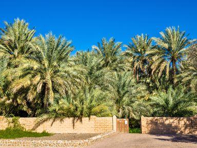 Город-оазис Аль-Айн: рай впустыне