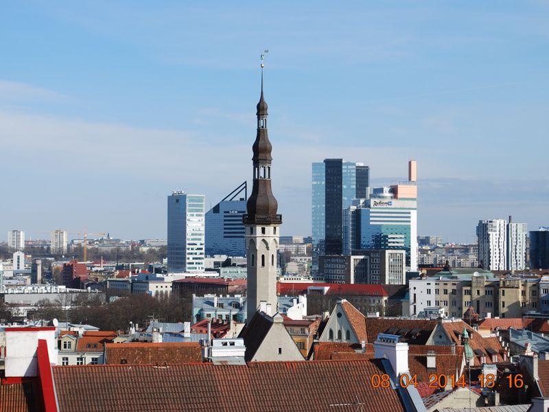 Экскурсия «Орел и Решка» в Таллине