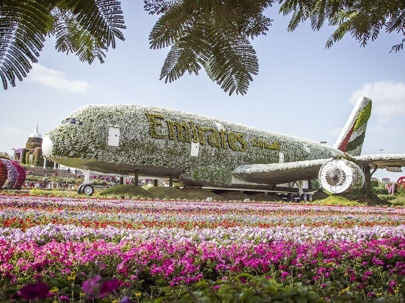 Экскурсия Парк цветов ивсемирная ярмарка Global Village вДубае
