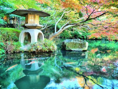 Традиционные сады ихрамы Токио