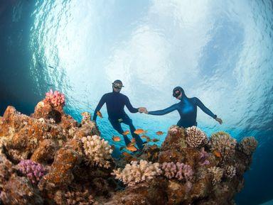 Плавание с мантами на острове Нуса Пенида