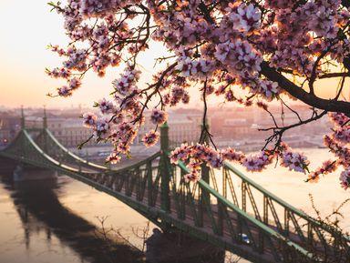 Будапешт: маршрут-отличник