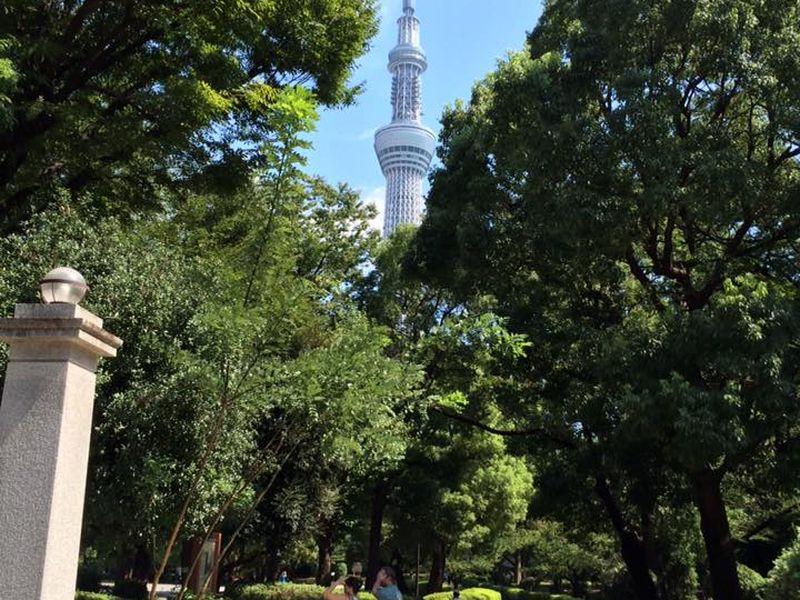 Токио— история исовременность