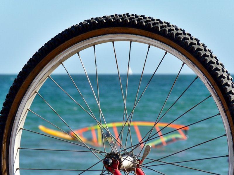Экскурсия По Барселоне на велосипеде: море, парки, спорт